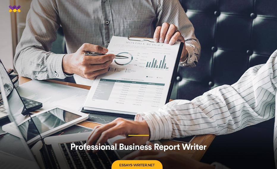 Professional Business Report Writer